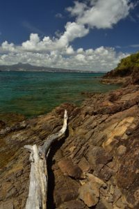 Le Site Naturel Protégé d'Anse Mathurin - Anse Bellay<br> Parc Naturel Régional de La Martinique