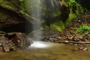 La Cascade Couleuvre<br> Parc Naturel Régional de La Martinique