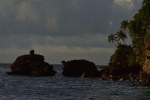 Anse Céron<br> Parc Naturel Régional de La Martinique