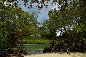 Le Trou Cochon<br> La Pointe du Vauclin<br> Parc Naturel Régional de La Martinique