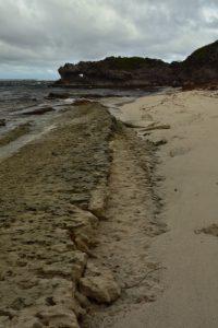 La Pointe Macré d'Anse Grosse-Roche<br> La Trace des Caps<br> Parc Naturel Régional de La Martinique