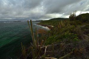 Le Cap Ferré<br> La Trace des Caps<br> Parc Naturel Régional de La Martinique