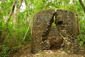 Four à Chaux<br> La Pointe Banane<br> Parc Naturel Régional de La Martinique
