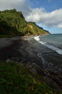 Plage de Grand-Rivère<br> Parc Naturel Régional de La Martinique