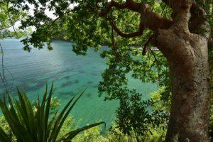 Anse Noir<br> Parc Naturel Régional de La Martinique