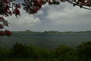 Aire de petite poterie<br> Parc Naturel Régional de La Martinique