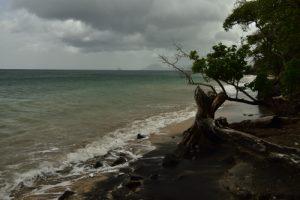 Pointe Borgnèse<br> Parc Naturel Régional de La Martinique