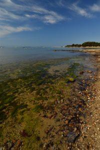 La plage de l'Argentière<br> Le Massif des Maures