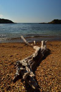 Île de Porquerolles<br> Port Fay ou plage Noire<br> Le Massif des Maures