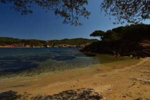 Port Fay ou plage Noire<br> Île de Porquerolles<br> Le Massif des Maures