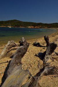 Île de Porquerolles<br> Plage du Grand Langoustier<br> Le Massif des Maures
