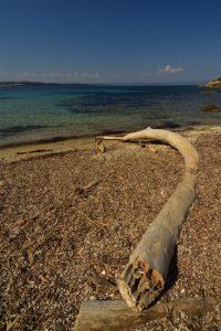 La plage de l'Aiguade<br> Île de Porquerolles<br> Le Massif des Maures