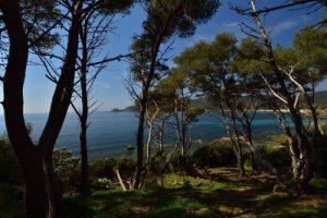 Cap Lardier depuis le du Cap Taillat<br> Le Massif des Maures