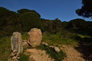 Le Dolmen de la Baie de Briande est une sépulture datant de 2000 ans avant J-C<br> Le Massif des Maures