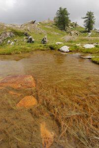 Les Lacs jumeaux<br> Vallée de Fontanalbe<br> Parc National du Mercantour