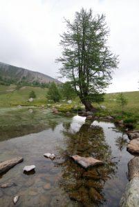 Fontanalbe : Lac grenouillle Parc National du Mercantour / Région de la vallée des Merveilles / Vallée de la Roya