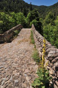 Pont romain de la Brigue Parc National du Mercantour / Région de la vallée des Merveilles / Vallée de la Roya