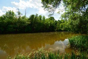 La rivière Indre près de Bréhémont<br> Parc Naturel Régional Loire Anjou Touraine