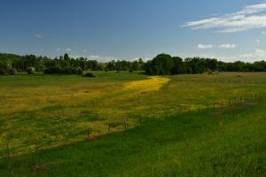Parc Naturel Régional Loire Anjou Touraine