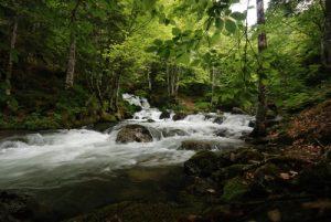 Torrent &amp; cascade sur le sentier de la cabane d'Ambanels<br> Région de Foix<br> Parc Naturel Régional des Pyrénées Ariégeoises