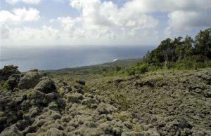 Coulée de Lave de 1986 du Cratère de Takamaka<br> Île de la Réunion