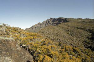 Vue du Sommet du Piton des Neiges<br> Île de la Réunion