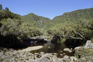 Du Cold de Bébour à la Plaine des Cafres Île de la Réunion