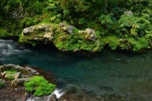La rivière Langevin près de la cascade du Trou Noir<br> Île de la Réunion