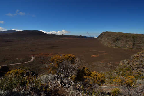 La Tourterelle à queue carrée (Zenaida aurita)<br> L'Îlet Chancel<br> Parc Naturel Régional de La Martinique