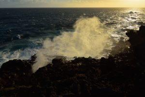 Le Souffleur de Pointe au Sel<br>Parc National de la Réunion