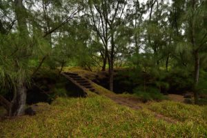 La Pointe de la Table<br>Parc National de la Réunion