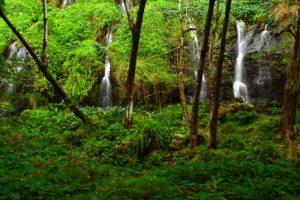 Le Saut du Gendarme<br> Parc Naturel Régional de La Martinique
