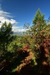 Le Dimitile<br>Parc National de la Réunion