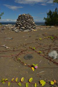 Cairn construit avec les galets de la plage et la liane rampante Patate à Durand (Ipomoea pes-caprae).<br> Forêt de l'Etang Salé<br> Île de la Réunion