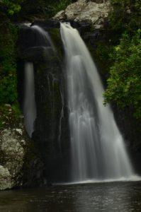 Bassin Grondin<br> Île de la Réunion