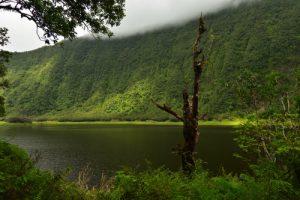 Le Grand Etang<br>Île de la Réunion