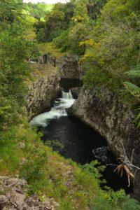 Bassins de la Rivière des Roches<br> Île de la Réunion