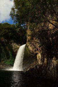 Bassin La Paix &amp; Cascade de la Rivière des Roches<br> Île de la Réunion