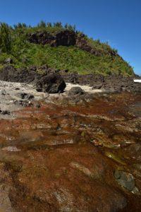 Plage de Grand-Anse<br>Île de la Réunion