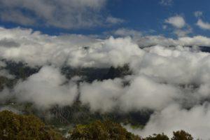 Point de vue sur le Piton d'Anchaing et le Cirque de Salazie<br> La Forêt de Bélouve<br> Parc National de la Réunion