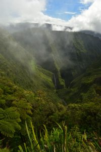 La cascade du Trou de Fer à la levée des nuages<br> Forêt de Bélouve<br> Parc National de la Réunion