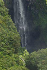 La cascade du Trou de Fer<br> Forêt de Bélouve<br> Parc National de la Réunion