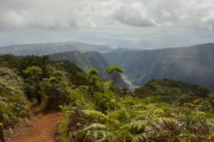 Point de vue de l'Îlet Alcide sur la Possession.<br> La Forêt de Sans-Souci<br> Parc National de la Réunion