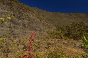 La vallée de la rivière des Galets entre Marla &amp; la cascade des 3 Roches.<br> Le Cirque de Mafate<br> Parc National de la Réunion