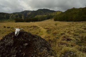 La Plaine aux Sables<br> Le Cirque de Mafate<br> Parc National de la Réunion