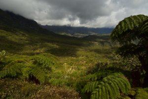 La Plaine des Tamarins depuis le Col des Bœufs.<br> Le Cirque de Mafate<br> Parc National de la Réunion