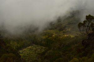 Le Cirque de Salazie au col des boeufs<br> Parc National de la Réunion