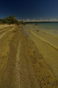 La Réserve Nationale de Chasse et de Faune Sauvage du Lac du Der