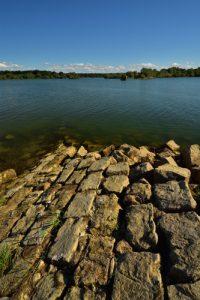 Presqu'île de Nemours<br> La Réserve Nationale de Chasse et de Faune Sauvage du Lac du Der