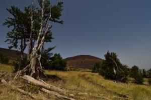 Le cratère du Monte Nero à Piano Provenza<br> Parco Dell'Etna<br> Île de La Sicile